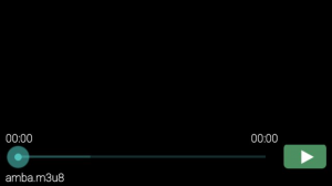 Screenshot_2014-01-27-17-18-48-300x168