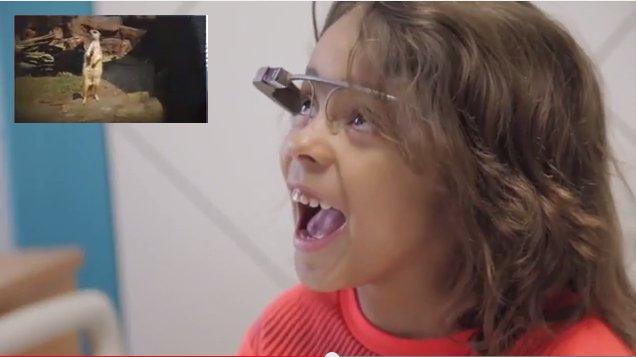 Niños hospitalizados visitan el Zoo de Houston a través de Google Glass